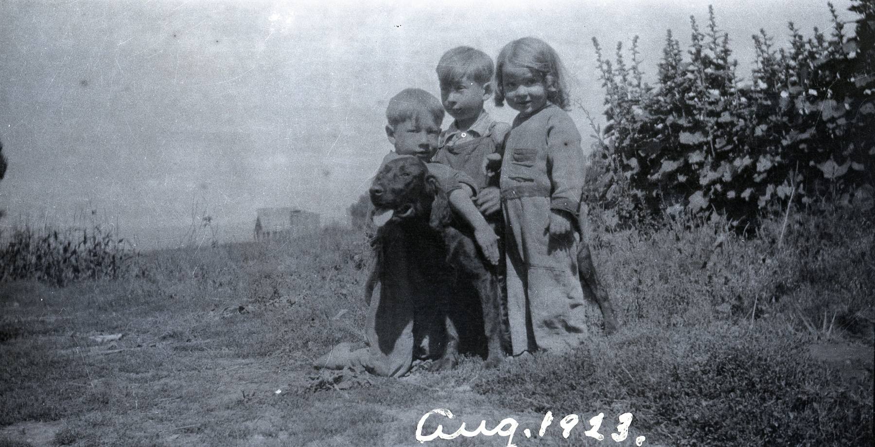 L-R Lane Ream, Jean Ream and Hellen Ream August 1923