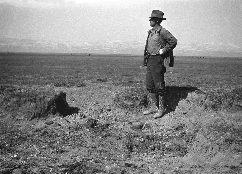 WWReam-surveyor-