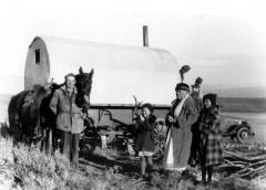 Sheep-camp-3-scaled