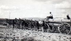 WW-Ream-surveys-Manti-Canyon